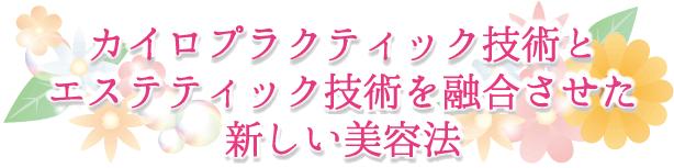 biyou_top
